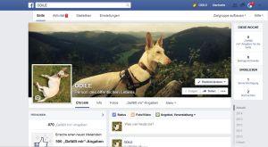 FB Odile